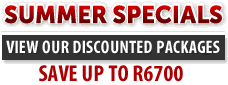 Web Design Course Special South Africa