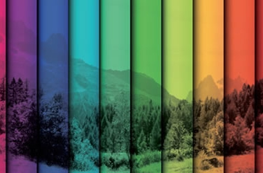 Choosing the Right Colours for Your Website