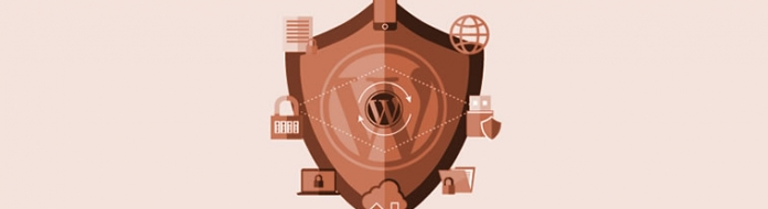 Learn the importance of WordPress website security