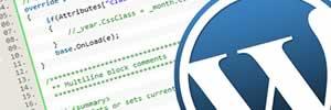 WordPress Customisation Course
