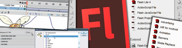 Flash Animation Course Durban